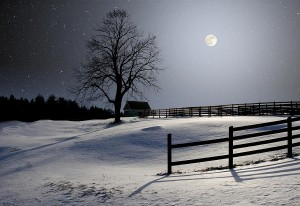 winter-full-moon-larry-landolfi