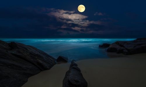 full-moon-night-beach-wallpaper-3